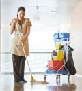 Reinigungsmittel der Profis