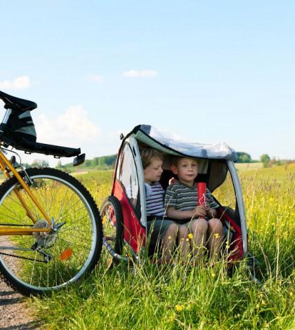 Fahrradanhänger kinder
